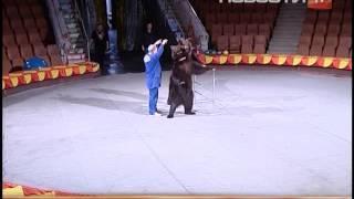 Самый большой цирковой медведь