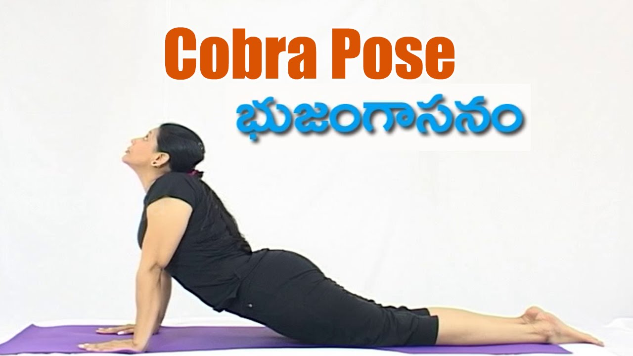 Bhujangasana COBRA POSE Benefits