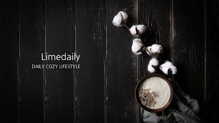 [라임데일리] 목화꽃 가지 조화 예쁜 고급 인테리어 장…