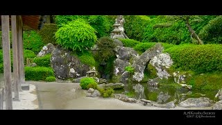 4K 知覧武家屋敷庭園 Chiran Samurai Gardens , Kagoshima Kyushu Japan