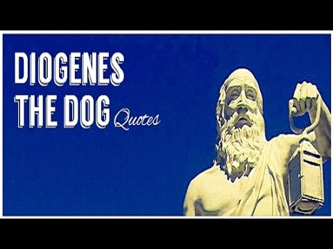 DIOGENES THE DOG Inspirational Quotes and photo tribute.