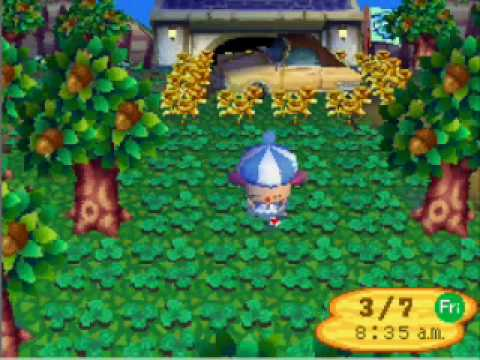 animal crossing wild world bells cheat codes