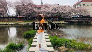 Travel Vlog | 海美邑城🌸⛩ | Korea, 서산시, 해미 | 韓國, 瑞山市, 海美