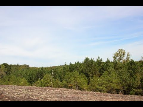 Bankhead National Forest Conservation HD