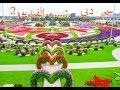 اكبر حديقة زهور في العالم.......سحر دبي