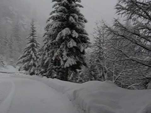Asm alpine ski racing solda 30 gennaio 2016