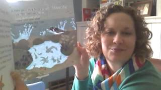 Secrets of the Seashore -- Books By Marisa -- Usborne Books and More