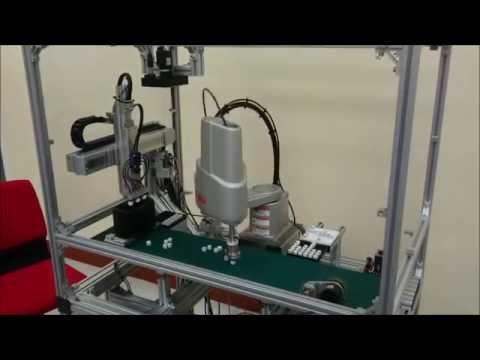 RCX340 + IVY2 Robot Vision Sorting Application [YAMAHA ROBOT]