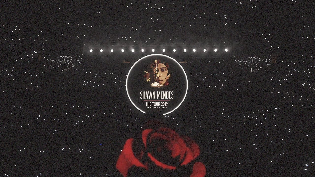 Image result for shawn mendes summer tour