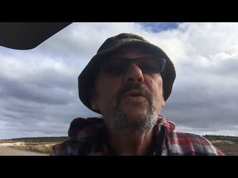 The Mushroom Song .. Original Song By Eric Butler..