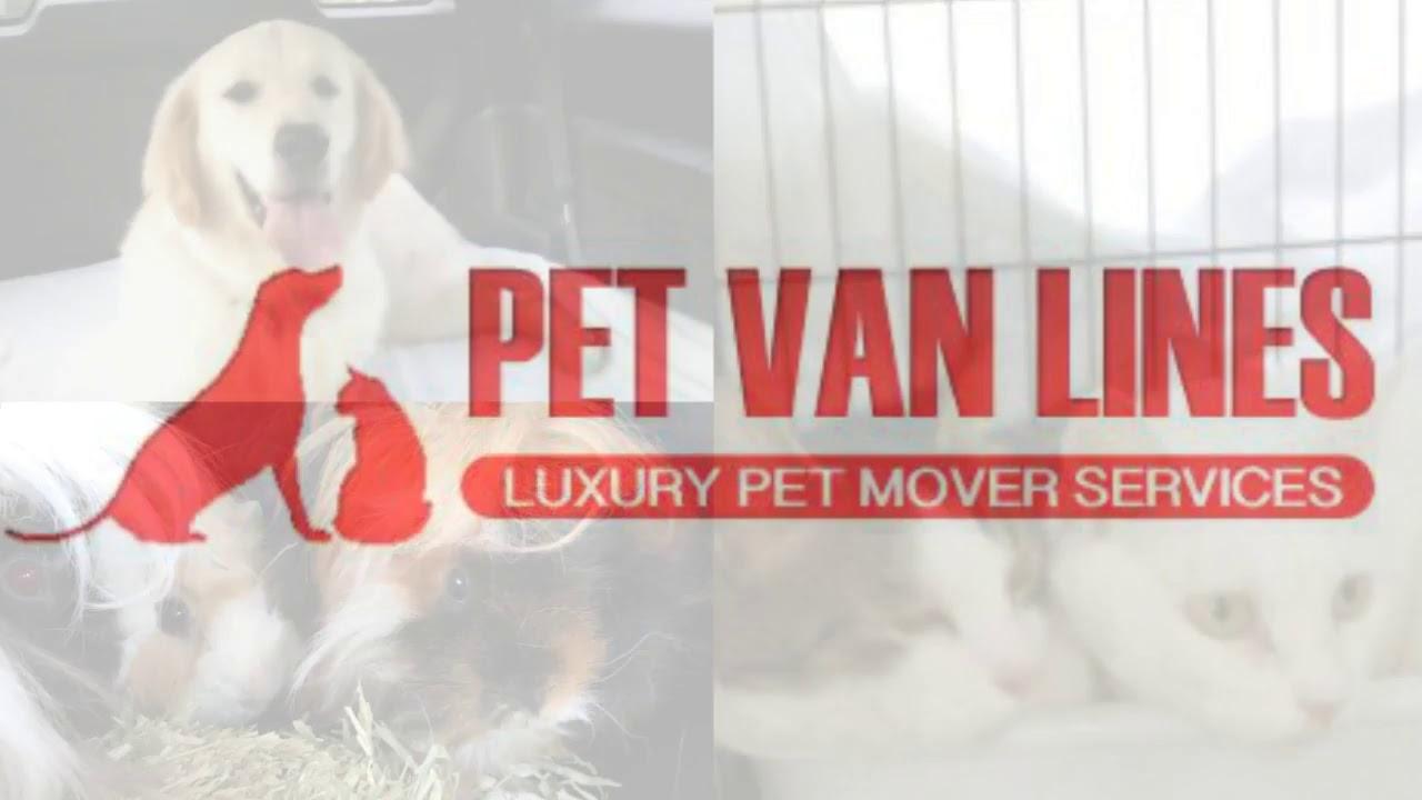 About Us - Door to Door Pet Transportation Services