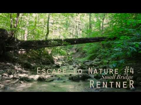 ASMR Escape to Nature #4 ✦ Small Bridge, relaxing Water Sounds (binaural 3D)