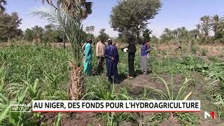 Au Niger, des fonds pour l'hydro-agriculture