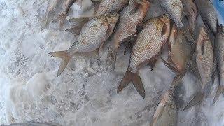 Рыбалка  на Рузском водохранилище с ночевкой на льду .2018-2019