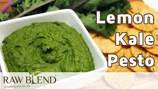 How To Make Lemon Kale Pesto In A Vitamix 5200 Blender