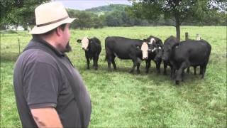 A Visit to Sir William Angus Farm