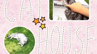 ~CAT HOUSE~ | Домик для кота своими руками :)