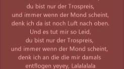 Alligatoah Trostpreis lyrics