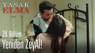 ZeyAl yeniden! - Yasak Elma 39. Bölüm