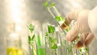 Plant Tissue Culture thumbnail