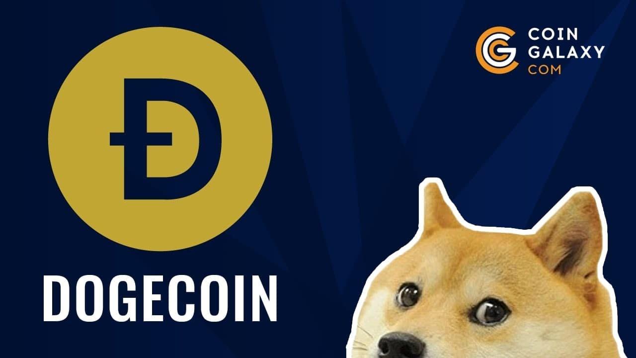Как появилась криптовалюта Dogecoin. Почему именно Dogecoin считается самой доброй.
