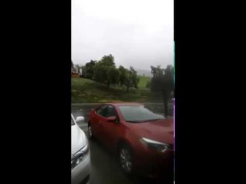Rain in Fremont ca