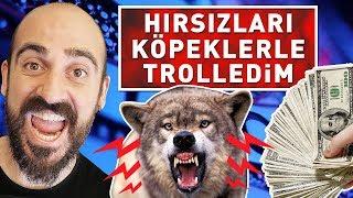 PARA HIRSIZLARINI KÖPEKLERLE TROLLEDİM ! (%100 EĞİTİMLİ)