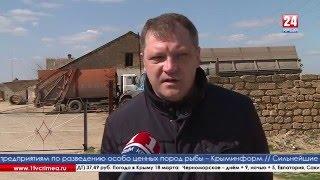В Белогорском районе неизвестные захватили свалку(В тот день, когда весь Крым празднует годовщину референдума о воссоединении с Россией, неизвестные лица..., 2016-03-17T23:10:29.000Z)