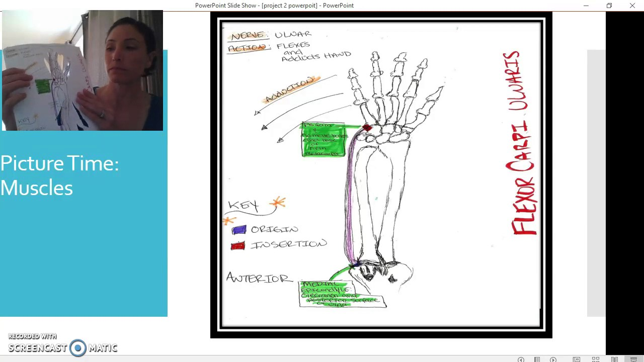 Extension/Flexion/ Abduction/Adduction and Circumduction of Hand at ...
