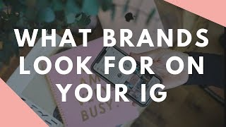 6 Things Brands Look For On Your Instagram Account (Travel Influencer & Blogger)
