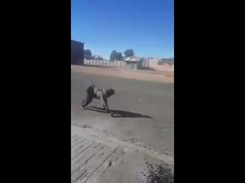 Man who walks like a dog Philip oliphant from south africa part1