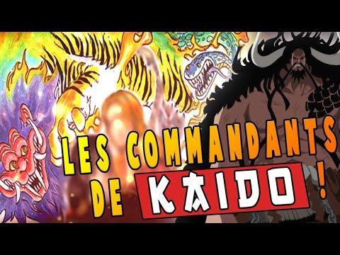 LES COMMANDANTS DE KAIDO RÉVÉLÉS ?! - One Piece Théorie