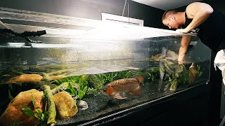 Will this aquarium change work? The king of DIY