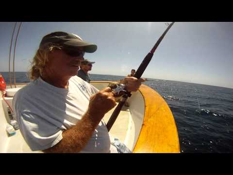 07 27 2015 barefoot dan nails a 28 lb yellowtail on for Seaforth fishing report