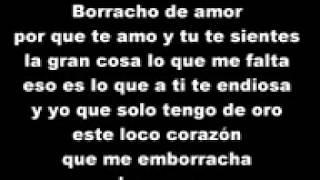 Borracho de amor (letra)la trakalosa de Monterrey
