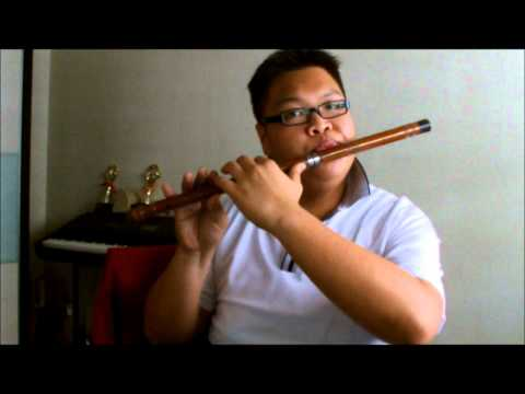 T-ARA Day by Day [Flute Cover]