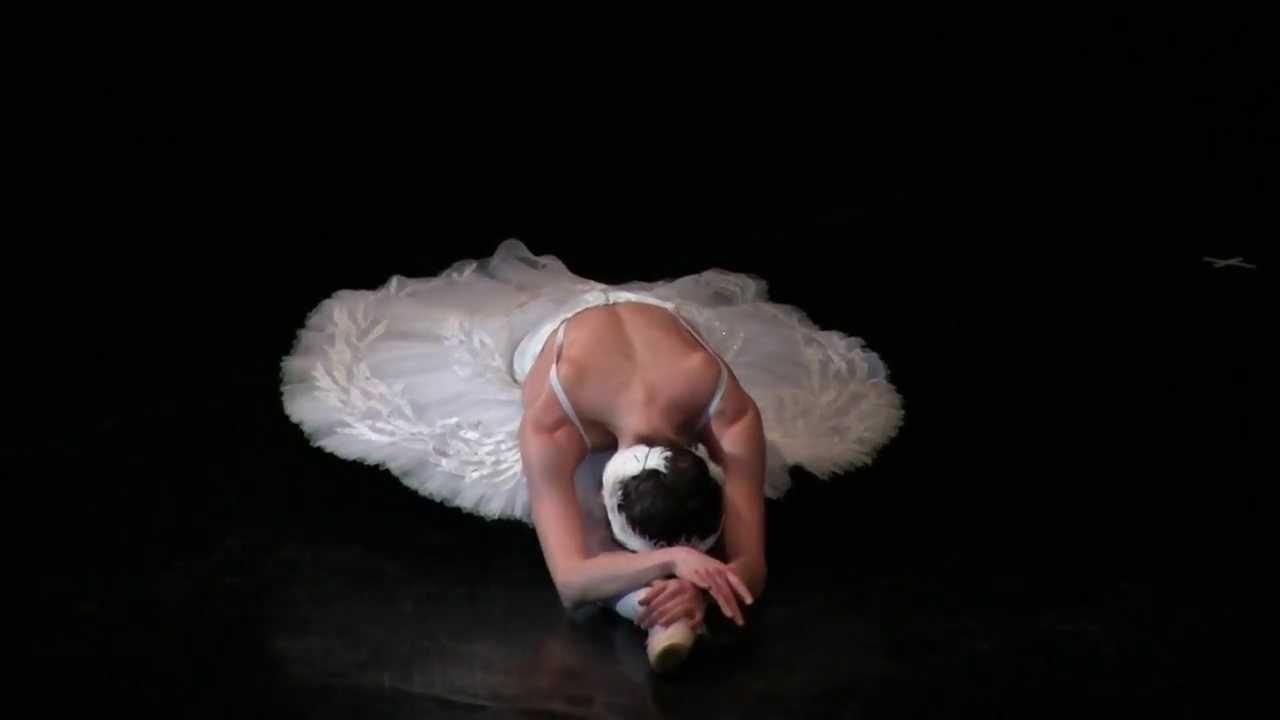 они производят умирающий лебедь балет фото зори сдесь тихие