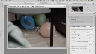 Nikon Capture NX 2 Selection Brush - Selective Color