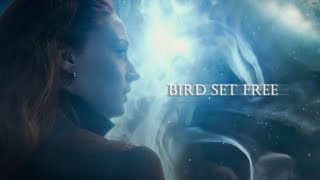Jean Grey (Phoenix) | Bird set free
