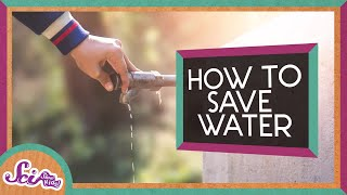 How to Save Water (and Help the Earth!)
