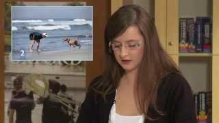 Egzamin 2 - Rozmowa na podstawie materiału stymulującego - Matura ustna z języka angielskiego thumbnail