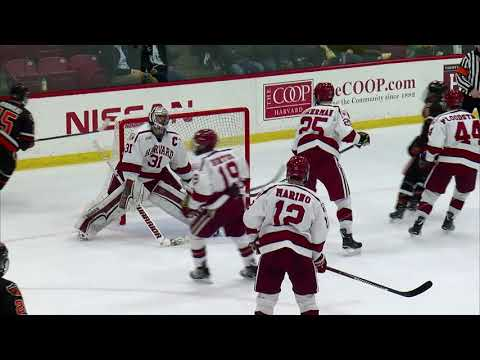 Recap: Harvard Men's Ice Hockey vs. Princeton