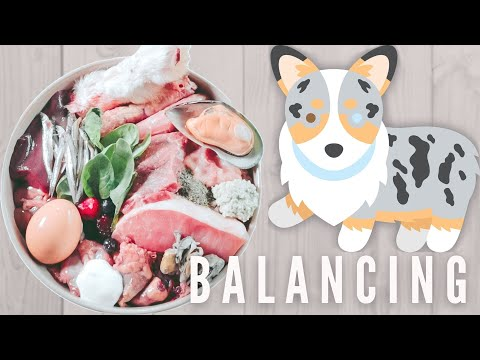 NRC Guidelines - Is Your Dog's Raw Meal Balanced?