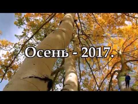 Осень 2017 г.  с.Пески, Поворинский р-он, Воронежская обл.