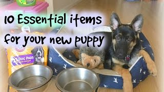10 essentials items for your new puppy