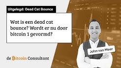 Wat is een dead cat bounce? En wordt er nu 1 gevormd door bitcoin?