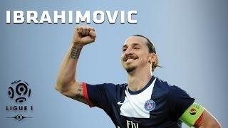 Zlatan Ibrahimovic - All 26 Goals - 2013-2014