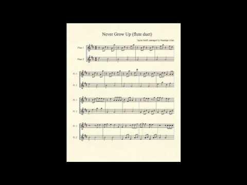 Never Grow Up (flute duet) - Taylor Swift
