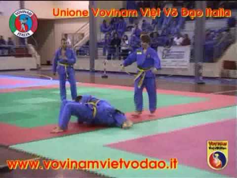 Forbici Vo Duong Briosco - 14° Campionato Italiano di Vovinam 2009