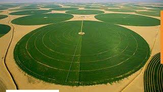 Как Саудовская Аравия превращает пустыню в плодородную землю